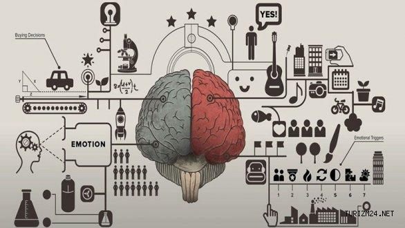 Nöropazarlama Nedir Ve Nasıl Kullanır?